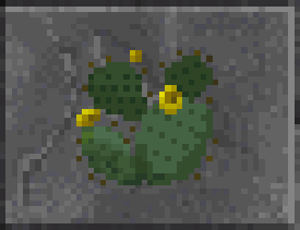 File:Cactus (Daggerfall).png