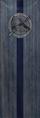 TESIV Banner Arena Blue.png