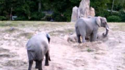 Vorschaubild der Version vom 8. Juli 2012, 11:50 Uhr