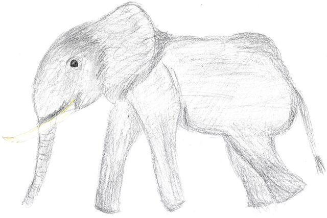 Datei:Zeichnung1.jpg