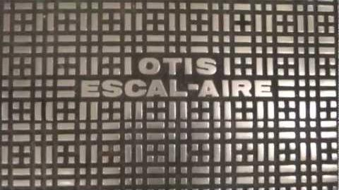 MUST WATCH Escalator Monday, Otis Escal-Aires @ Macy's & Furniture Coddingtown Mall, Santa Rosa CA