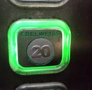 GoldStar green touchbutton Edelweiss