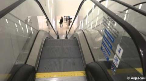 Happy Escalator Monday! Otis NextStep escalators at Zara, East Kilbride Centre