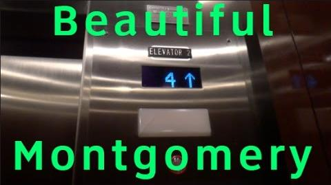 Beautiful Montgomery Traction Elevators @ the Worthington Renaissance Hotel in Fort Worth, TX