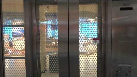 Chewbacca! Super-Obnoxious Dover Hydraulic Elevators - Roosevelt Field - Garden City, NY