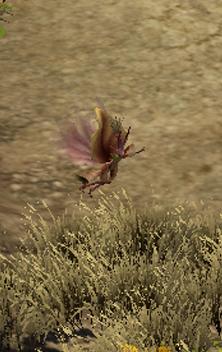 File:Blossom.jpg