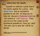 Save the Guards