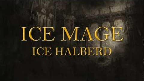 Eligium Race Introduction Human Mage