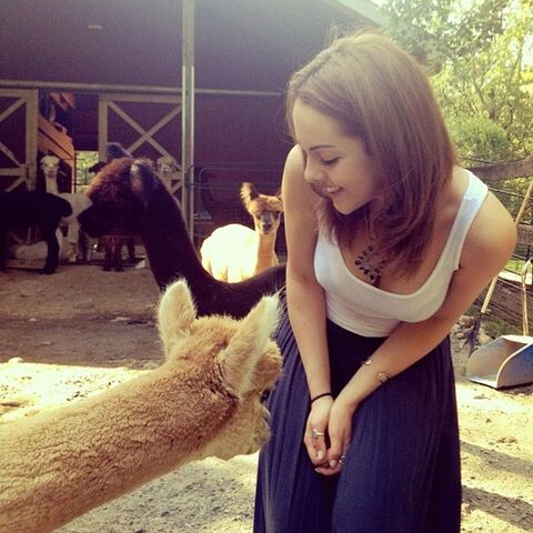File:Liz with Llama 2.jpg