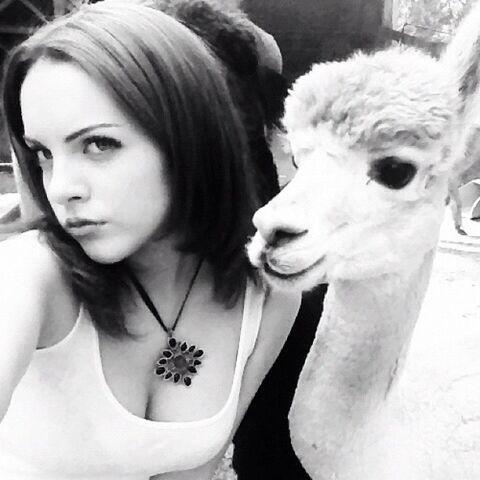 File:Liz and Llama.jpg
