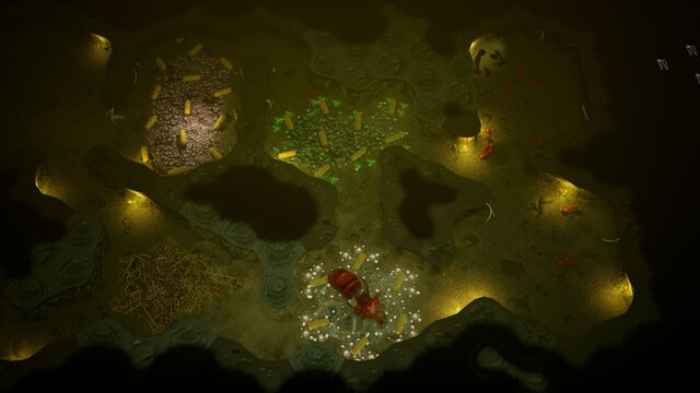 File:Empires-of-the-undergrowth 004.jpg