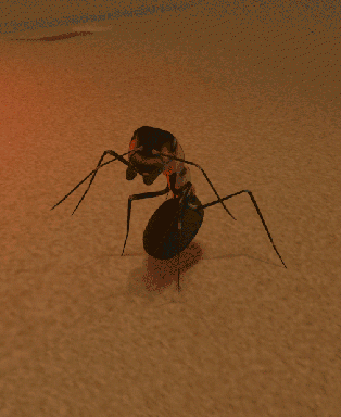 File:Wood Ant.png
