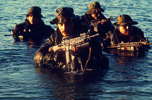 Navy Seal Infantry