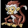 Polar Monkey