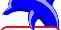 Dolphin (Nintendo)