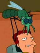 Infosquito