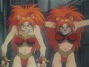 Puma Twins