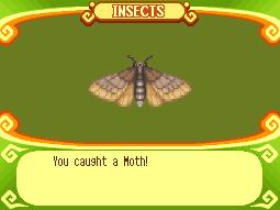File:Moth.png