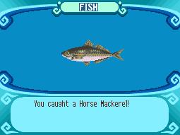 File:Horse Mackerel.png