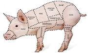 Pork-cut-diagram