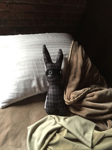 File:Home-bunny.jpg