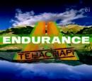 Endurance: Tehachapi
