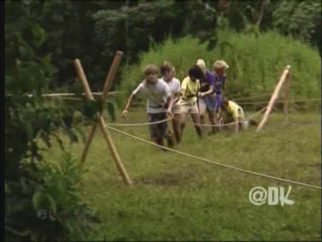 File:312 - Bamboo Jungle (044).png
