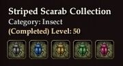 Striped Scarab collection