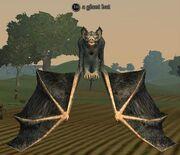 A giant bat
