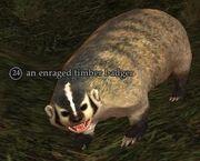 Enraged timber badger