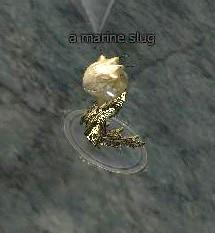 File:Marine slug.jpg