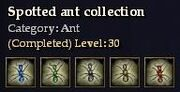 CQ ant spotted Journal
