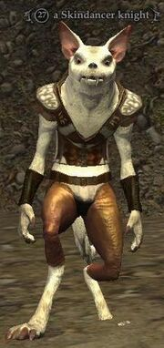 Skindancer knight