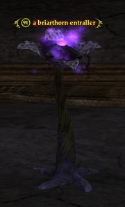 A briarthorn entraller