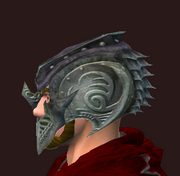 Dark Evoker's Hat (visible)