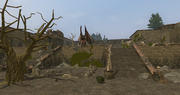The Forest Ruins - foyer