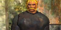 Bodyguard Greiwolv