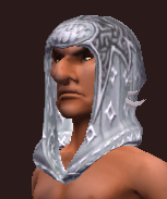 Elementalist's Cowl of the Citadel (Equipped)