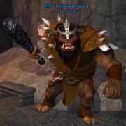 A Terrok gate guard