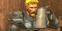 Guard Dravin