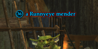 A Runnyeye mender (Enchanted Lands)