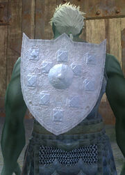 Carbonite Kite Shield, Equipped