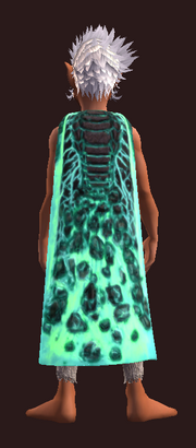 Dragonhide Shroud of Deathdealing (Equipped)