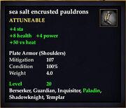 Sea salt encrusted pauldrons