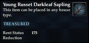 Young Russet Darkleaf Sapling
