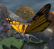 A monarch fae drake hatchling