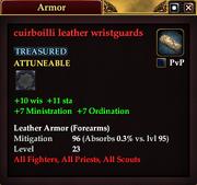 Cuirboilli leather wristguards