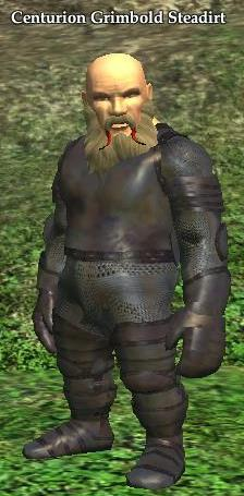 File:Centurion Grimbold Steadirt.jpg