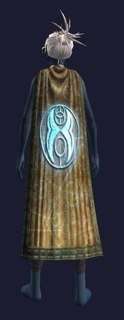 Cloak of the Spire (Equipped)