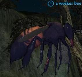 File:Worker bee.jpg